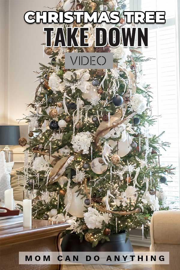 Christmas Tree Take Down Video
