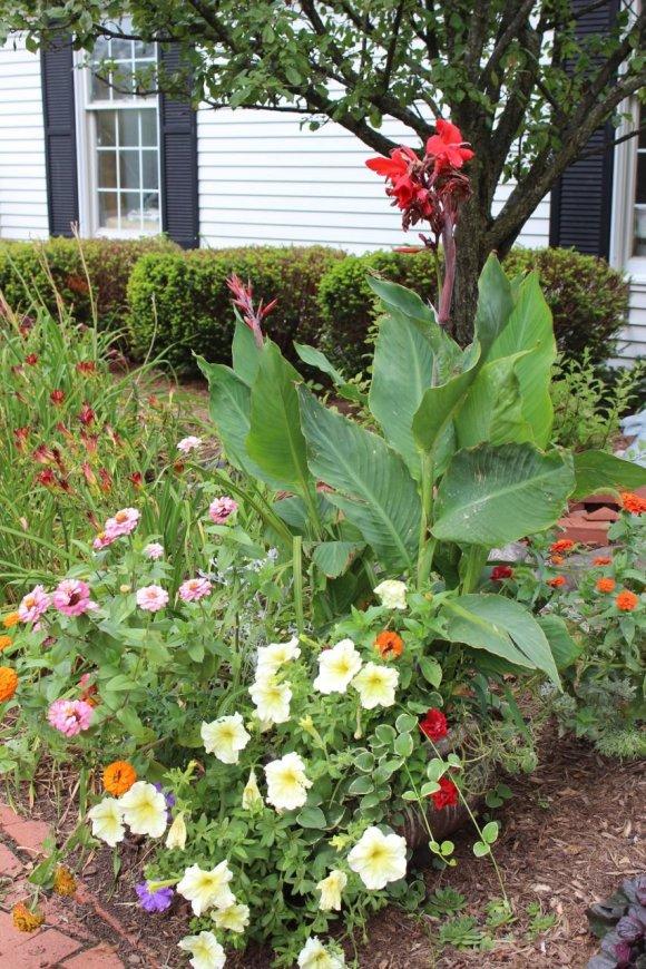 nontraditional planter, pretty planter