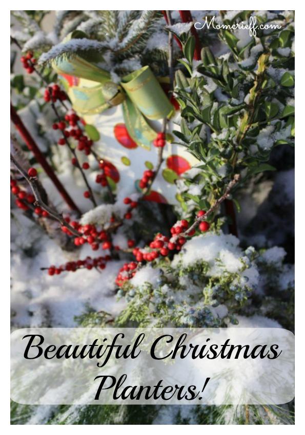 Beautiful Christmas planters