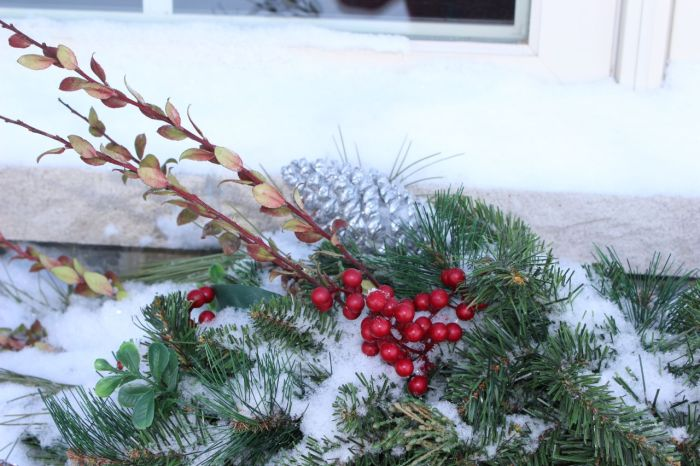 Here's what's in the window box.