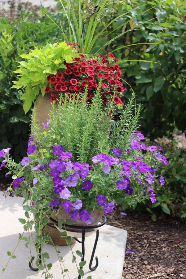 Over 20 flower planter ideas from my neighborhood!