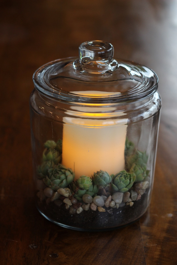 fall succulent candle in storage jar