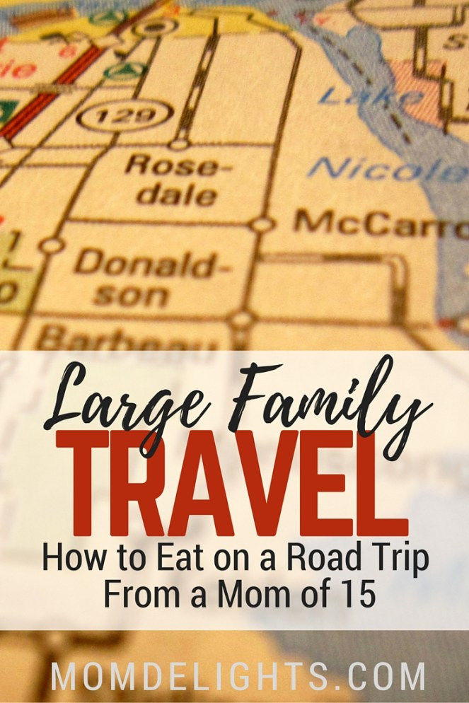 Large Family Travel- Eating on a Road Trip