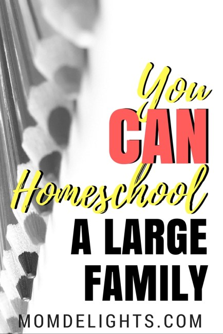 Yes, You CAN Homeschool a Large Family!