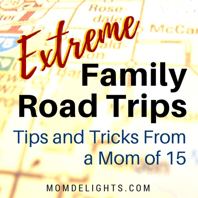 large family road trips