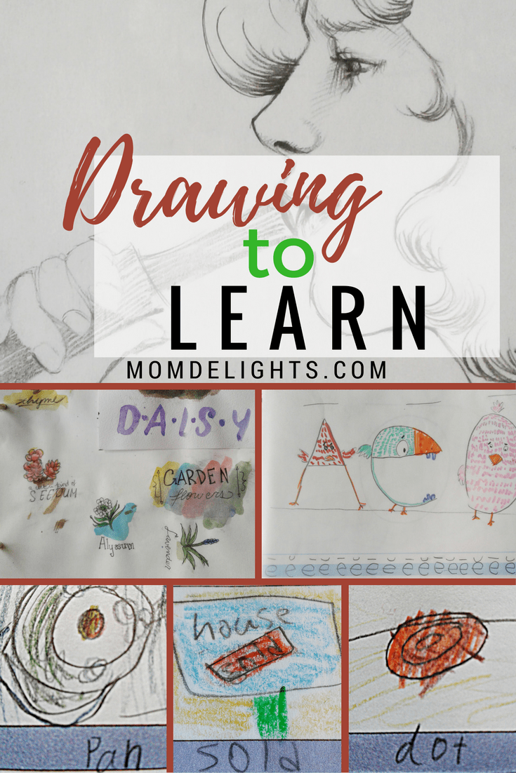 homeschooling, drawing to learn, drawing to teach