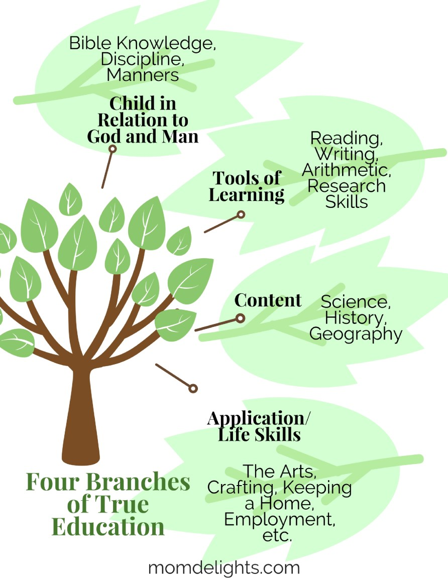 four branches of true homeschooling education how to solve homeschooling problems