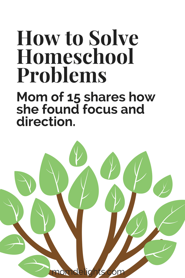 How to Solve Homeschool Problems with focus and direction