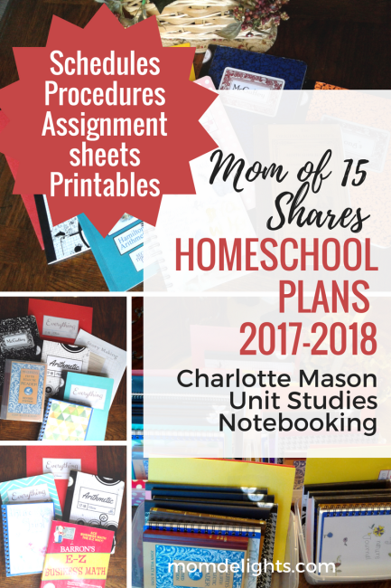 How We Homeschool: Mom of 15 Shares the Details
