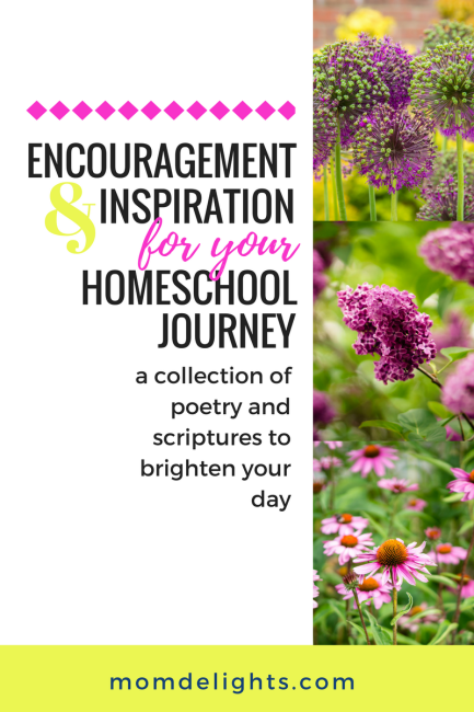Encouragement and Inspiration for Your Homeschool Journey