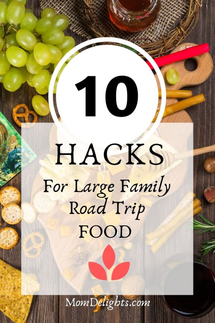 10 Hacks for Large Family Road Trip Food