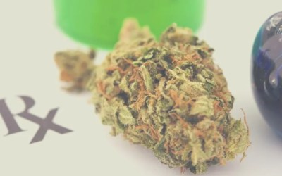 Missouri Moves Along Approval of Medical Marijuana Transporters, Cultivators