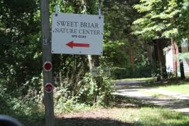 sweetbriar 001