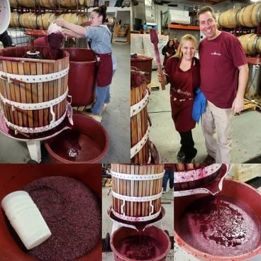 wine u design