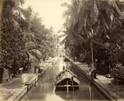 Padda Boats on Colombo to Negombo Canal (Hamilton Canal)