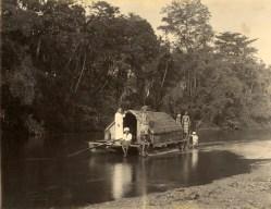 House Boats on Kalani River