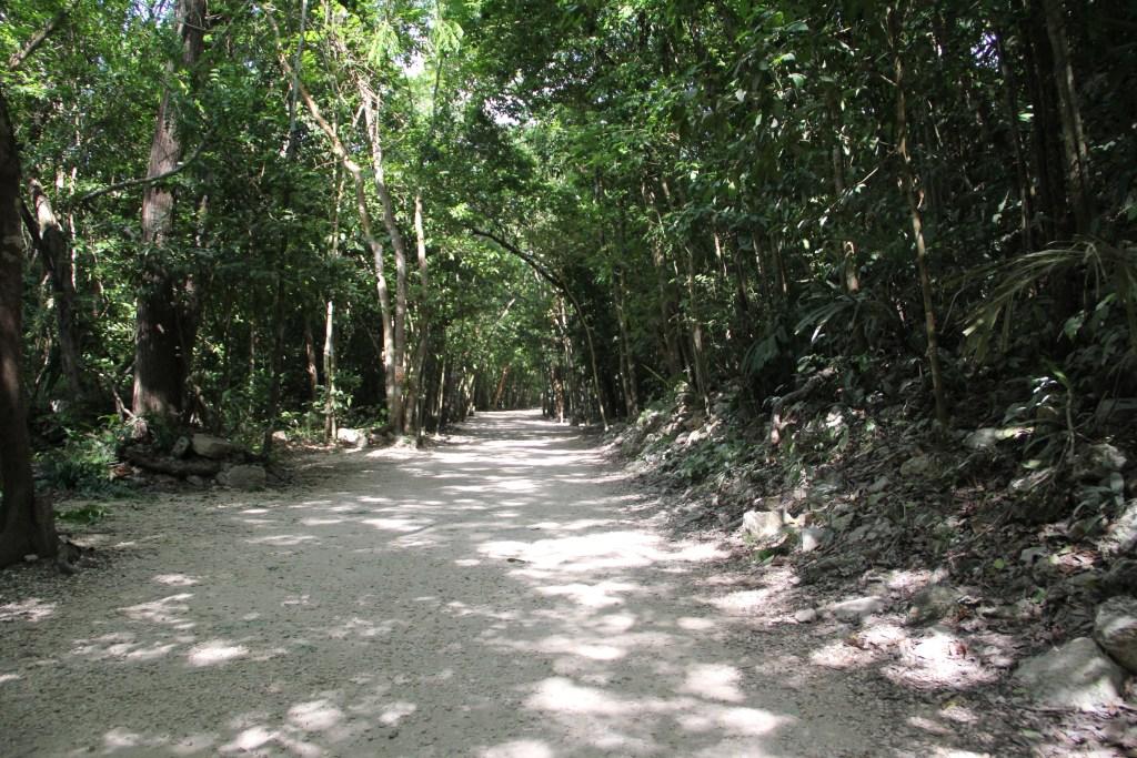 Path through Coba Ruins