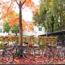 outono em Freising (Munique)
