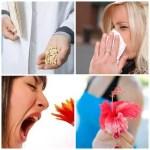 Homeopatía para las alergias más comunes