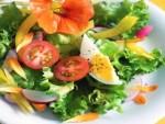 Antidieta – Fit for life ¿Qué es y cómo funciona? Recetas y menú incluido.