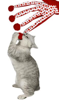 luva gato