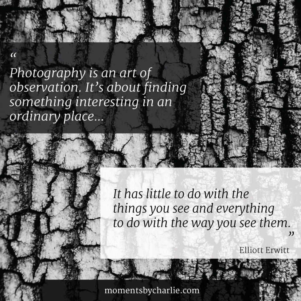 Photography Quote // Photography is an art of observation. It's about finding something interesting in an ordinary place… I've found it has little to do with the things you see and everything to do with the way you see them. // Moments by Charlie Albright | Creative Lifestyle Blog | Art + Fashion + Lifestyle