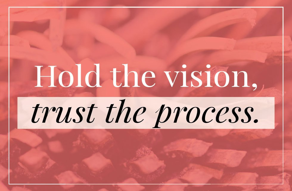 "Quote – ""Hold the vision, trust the process."""