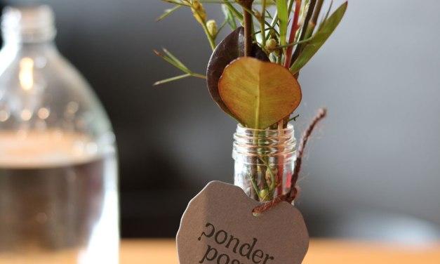 Adelaide Florist – Ponder Posy