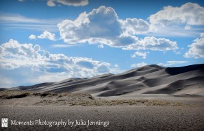 6-Moments Photography by Julia Jennings Sand Dunes