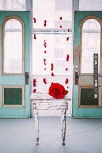 Abre las puertas al amor con Moments Bodas y Eventos