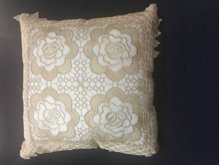 Throw Pillow 1