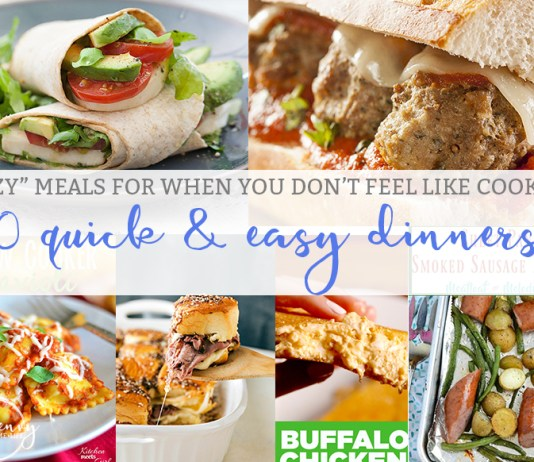 Quick and Easy Dinners aka Lazy Meals Round Up from Mom Envy
