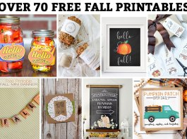 Free fall printables. Download over 70 free fall printables including free fall wall art, free fall gift tags, free fall banners, and more! #freefallcrafts #freefallprintables #falldecor
