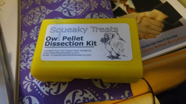 Used Owl Pellet Dissection Kit