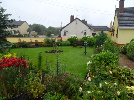 This is a beautiful home garden in Tallanstown. The back flowers are all white calla lilies! It was bucketing rain when I took this picture, unfortunately, so the view isn't as clear as I'd have liked.