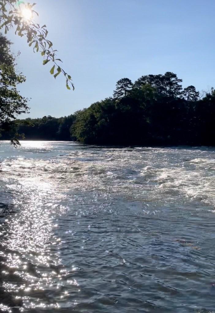 view of Chatahoochee River from kid friendly hike at Chatahoochee Environmental Education Center