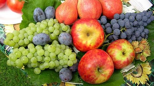 孕婦秋天乾燥缺水要吃什麼?四種當季水果讓您水噹噹 1