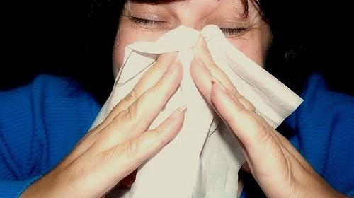 秋季過敏性鼻炎 症狀有哪些 該如何改善