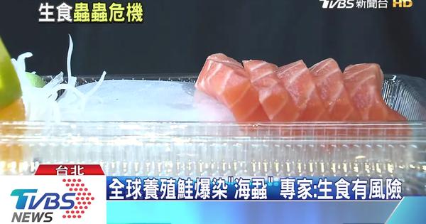 全球養殖鮭魚寄生蟲爆發感染 生食有風險