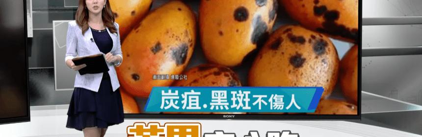 芒果黑點可以吃嗎? 民眾食用後劇烈腹痛急診