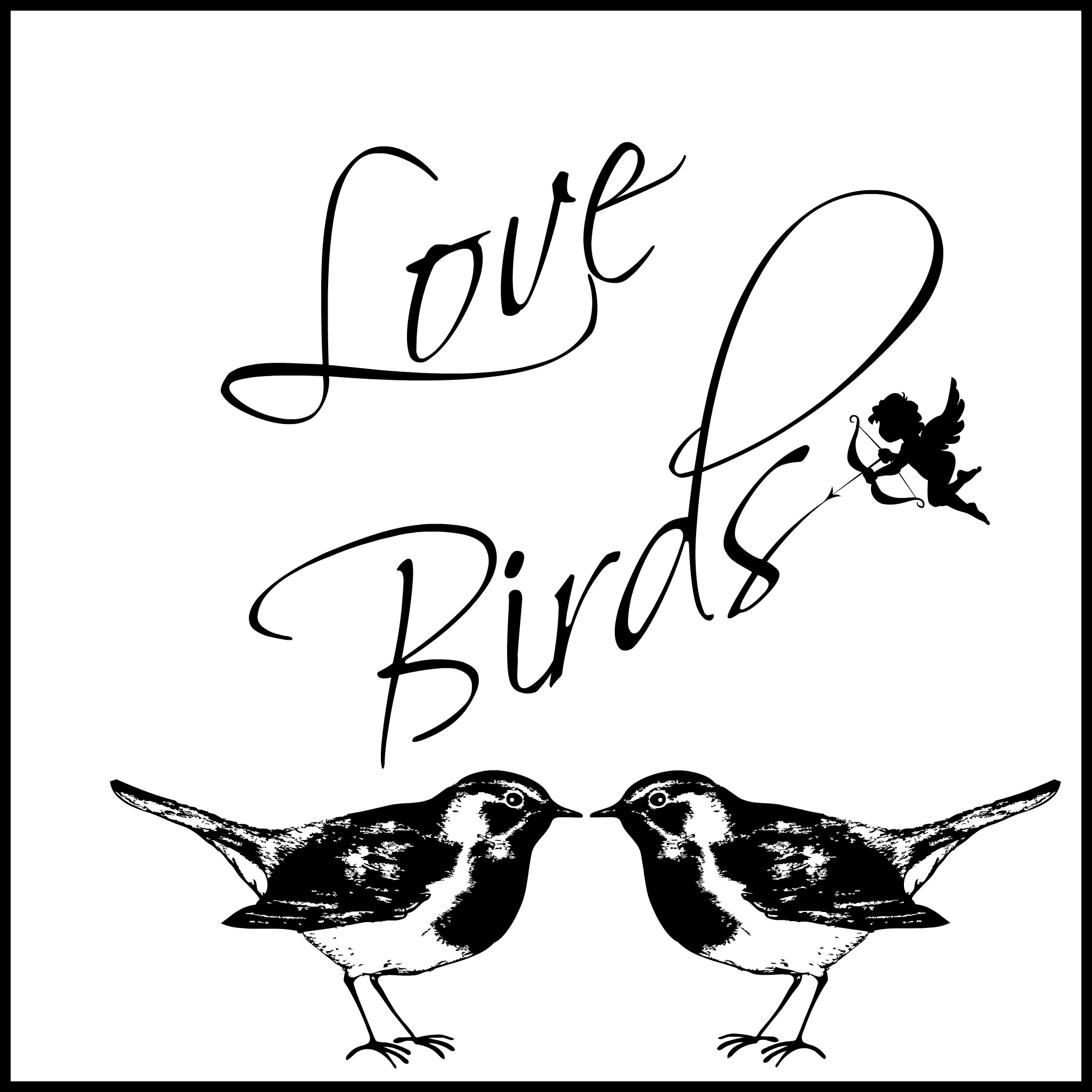 Lovebirds Square