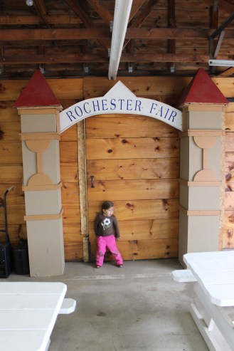 Rochester Fair 2015 110