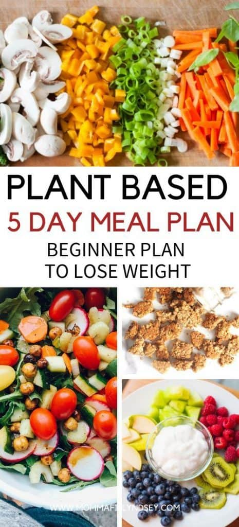 Plant Based Recipes and 5 Day Meal Plan to Lose Weight for Beginners. Tips and ideas for breakfast, lunch, dinner and snacks. Grocery list and Meal Plan to start plant based lifestyle.