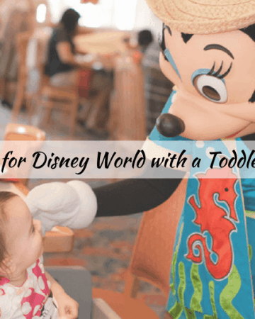 best hacks for traveling to Disney world with a baby or toddler