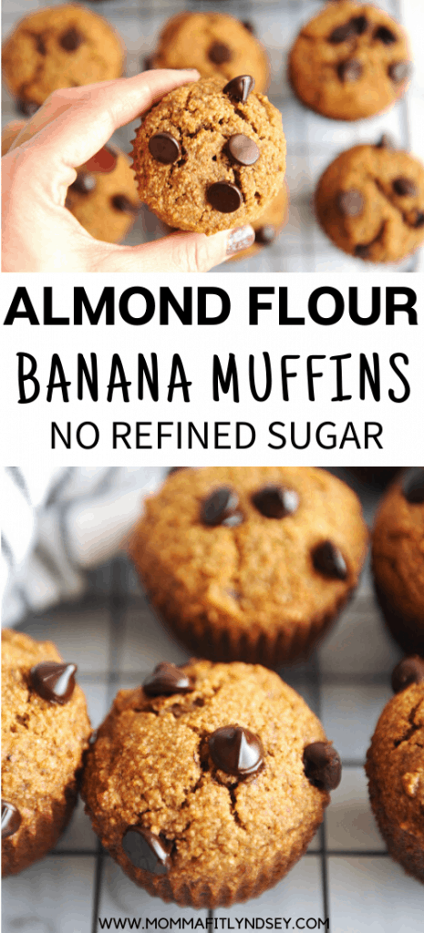 almond flour banana muffins gluten free and free of refined sugar. Chocolate chips make these healthy and easy to make muffins a family and kid approved breakfast or snack.