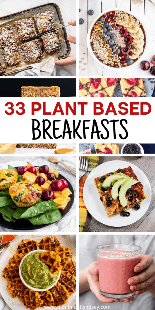 whats for breakfast on a plant based diet?