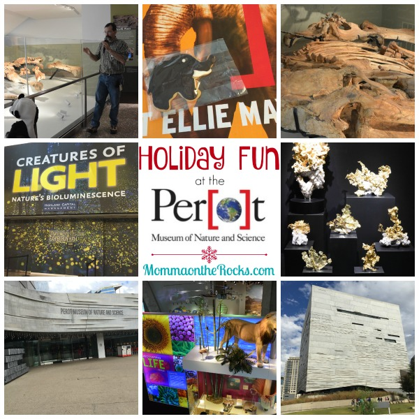 holiday fun at the perot