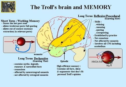 anatomy of a troll brain