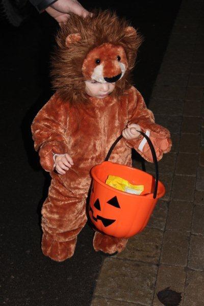 Halloween Lion