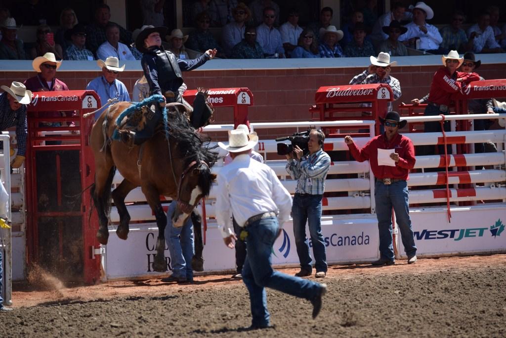 Calgary Stampede rodeo pics